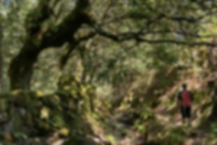 portugal-peneda-moinhos-parada-hike-2.jp