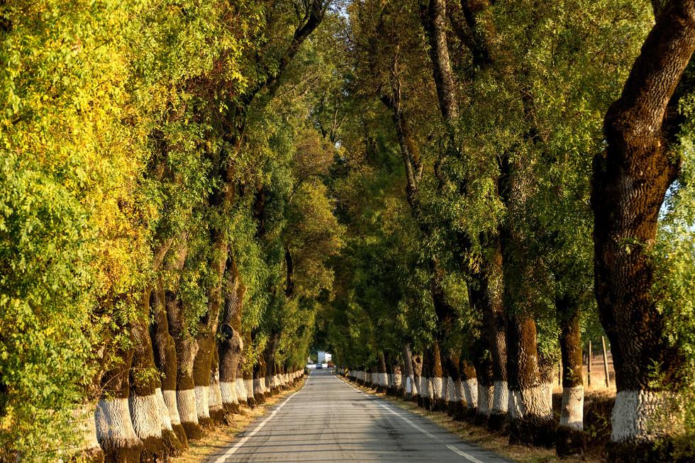 Southern Portugal walking hiking tour