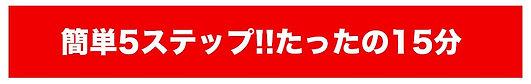 え11cxf簡単5ステップ.jpg