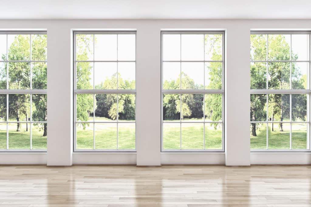 windowstock1-1024x683.jpg