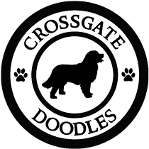 CD-Logo.png