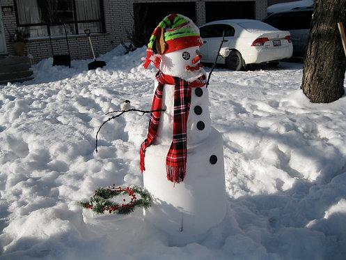 Frosty Elf