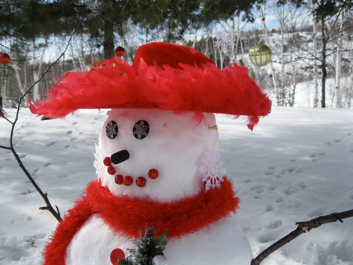 Frosty Diva