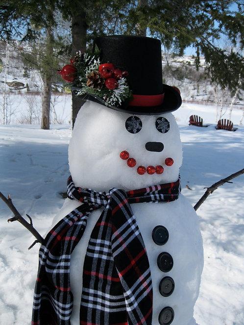 Classic Frosty