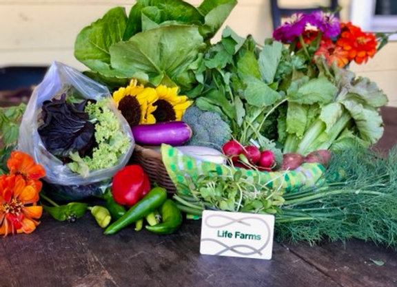 Seasonal Farm Box