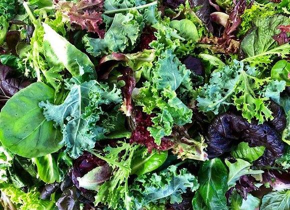 Vitality Salad Mix