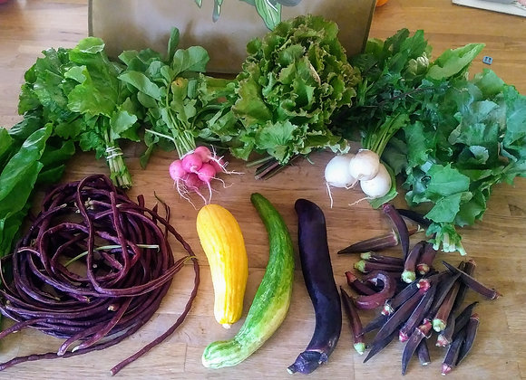 CSA FULL SHARE of vegetable, herbs & micro greens (19 weeks, prorated)