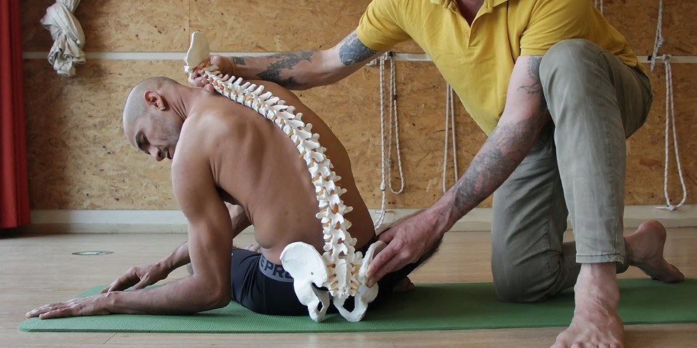 Сертифицированный курс по Тай Йога терапии. с Альфонса Трешель