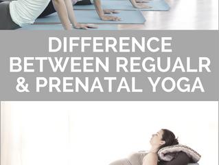 DIFFERENCE BETWEEN REGULAR AND PRENATAL YOGA