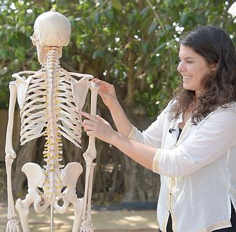 Anatomie & Fysiologie voor Yogadocenten Online Cursus