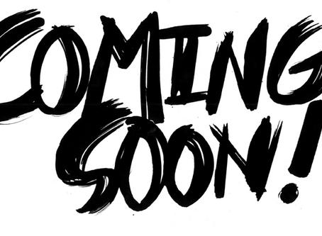 New Vinyl Flooring Launch