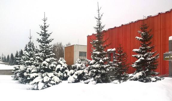 Дом ученых. Зима..jpg