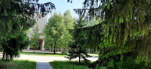 Вид на институты с яблоневой аллеи..jpg