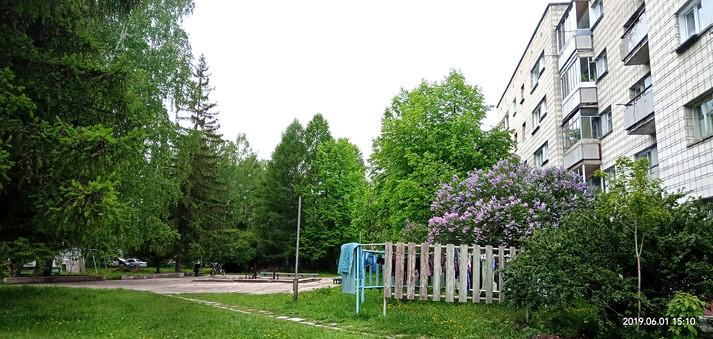 Типичный двор 1 круга.jpg