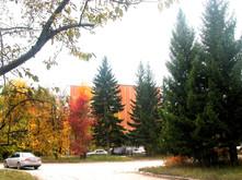 дом ученых осенью.jpg