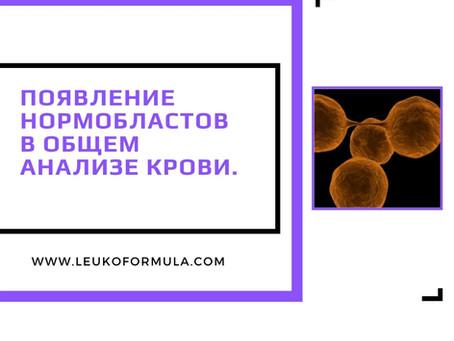 Появление нормобластов в общем анализе крови.