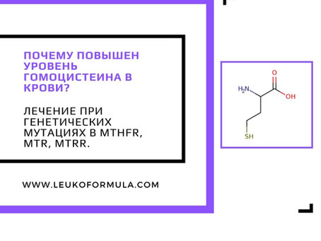 Почему повышен уровень гомоцистеина в крови? Лечение при генетических мутациях в MTHFR, MTR, MTRR.