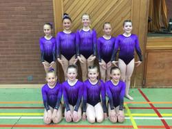 Novice Intermediate gymnasts