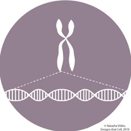 jennifer DNA (1).png