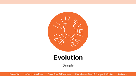 JV_Powerpoint Template_Evolution.png