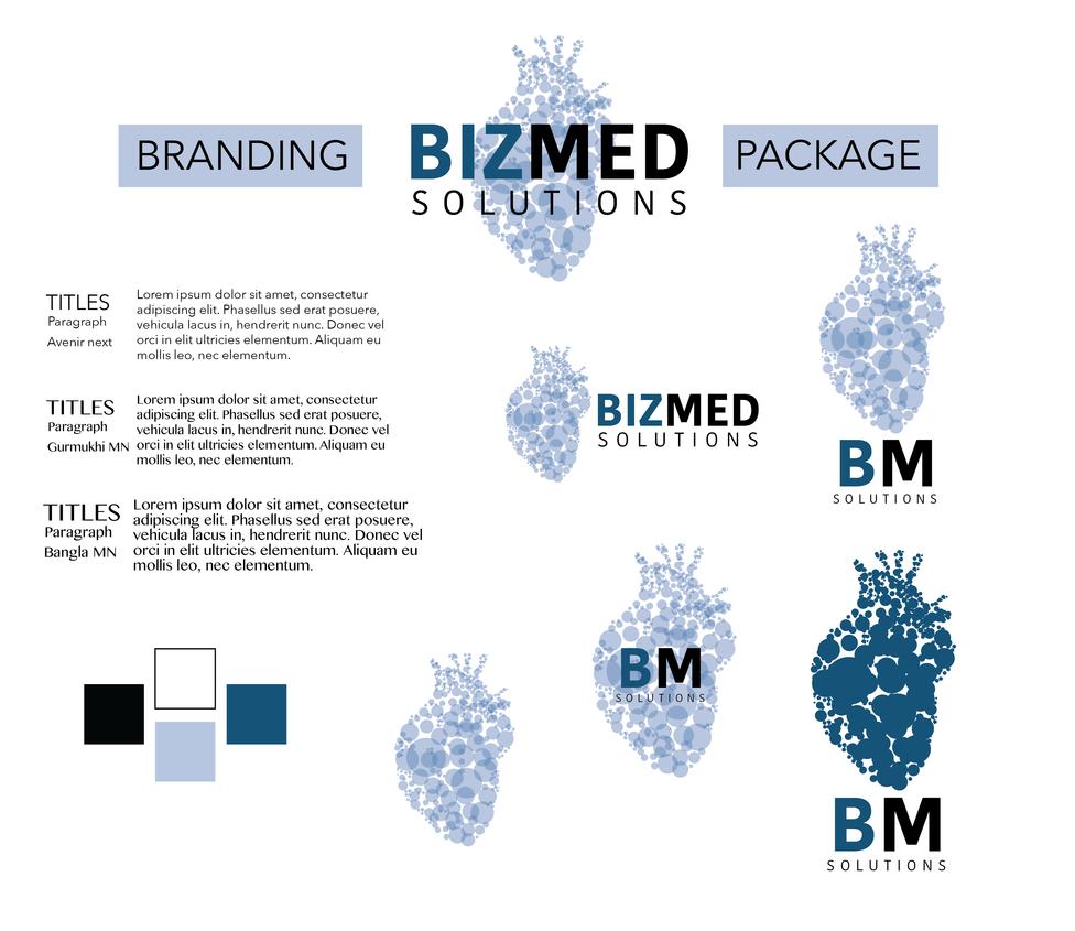 Bizmed Solutions Branding Package