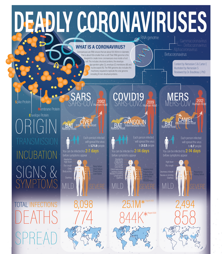 Deadly Coronaviruses (2020)