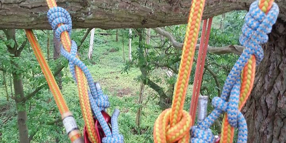 Access a Tree Using a Rope and Harness and Aerial Tree Rescue