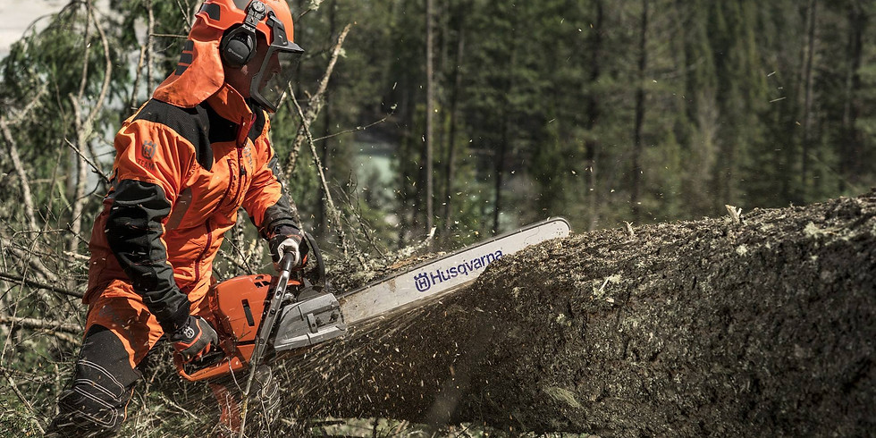 Chainsaw Maintenance, Crosscutting, Felling & Processing trees up to 380mm