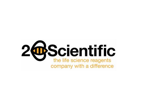2b social logo.PNG