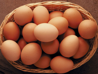 Eggs: Organic, Free Range, Free Run, Omega 3, White or Brown? Understanding the jargon…