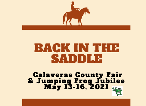 back in the saddle logo.png