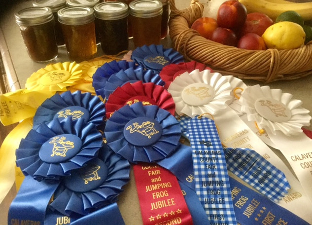 Fair ribbons 2017.jpg
