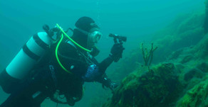 Our first Baikal dive