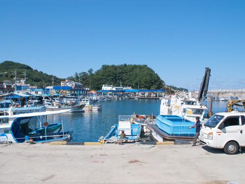 Yangyang marina