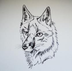 Scorched Earth: Swift Fox