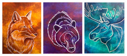 Red Fox, Black Bear, Blue Moose