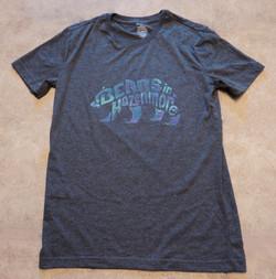 BiH Northern Lights Bear Shirt