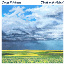 """Thrill on the Wind"" Single Artwork"