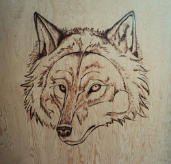 Scorched Earth: Grey Wolf