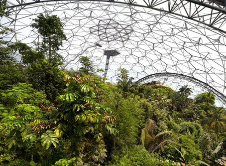 Visit to Eden Project