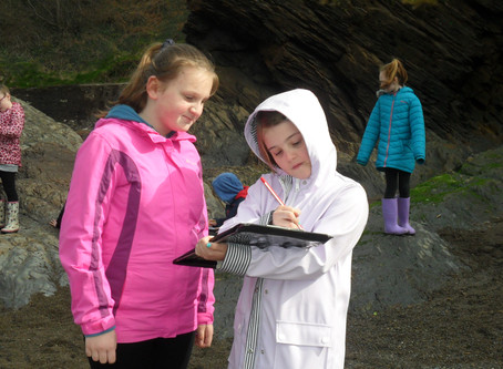 Year 5 Visit Hele Beach