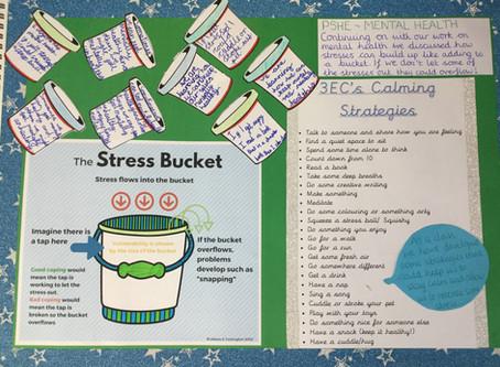 The Stress Bucket