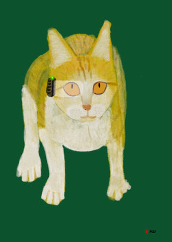 Cyborg Series 4 - Cat from space_4