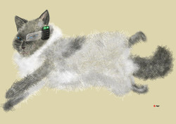 Cyborg Series 4 - Cat from space_2