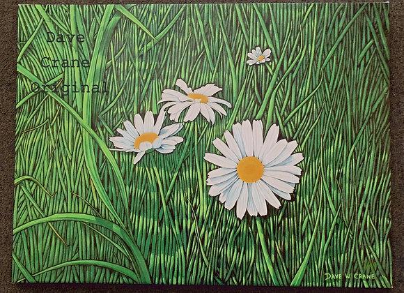 Daisy Oil Paint Giclee