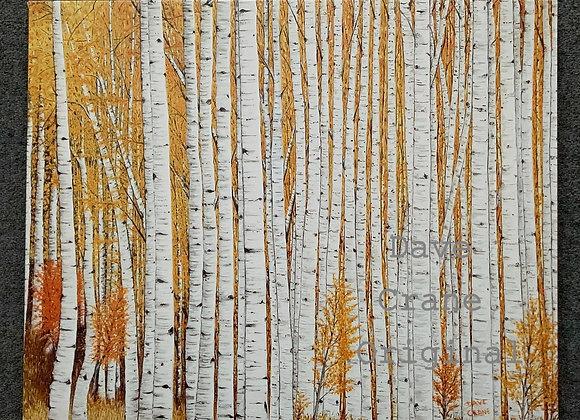 Birch Trees Oil Paint Giclee Print