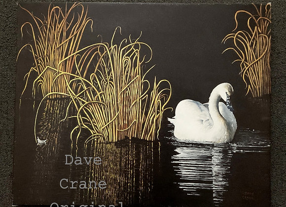 Swan Oil Paint Giclee