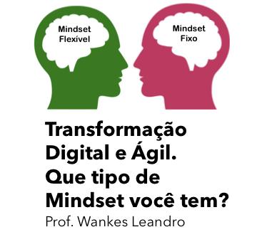 Em tempos de Transformação Digital e Ágil você precisa ter o mindset certo. Que tipo de mindset você