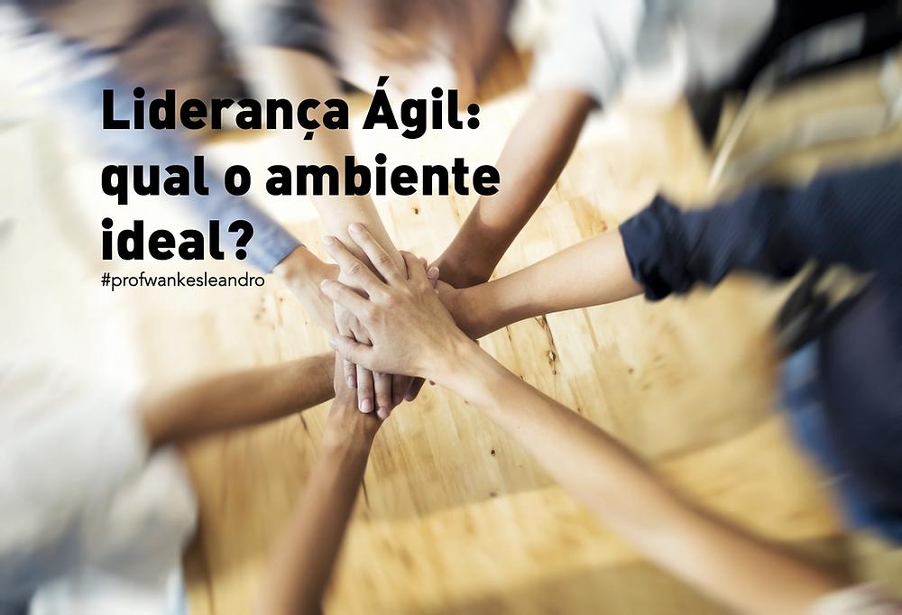 liderança, agil, agile, leadership, wankes leandro