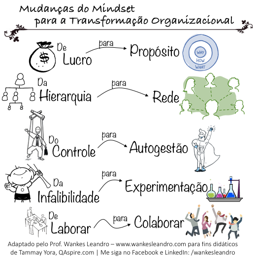 mudanças no mindset para a transformação organizacional, prof wankes leandro